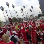 santas-palm-trees